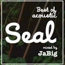 Das Sonntags-Mixtape: Best of acoustic Seal