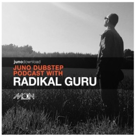 Radikal Guru - Summer 2015 Mix for Juno Records *FREE DOWNLOAD*