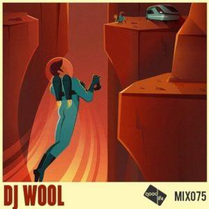 Good Life Mix 75: DJ Wool // free download