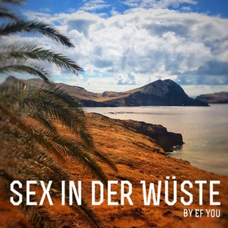 SEX IN DER WÜSTE by Ef You - 200 Minutes of funky Summer Tunes with some Reggae, Dub, Funk, Brazil, Breaks, HipHop, Soul, Cumbia, Afro, Jazz Tracks for FREE DOWNLOAD