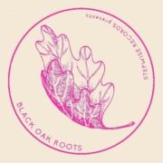 Black Oak Roots presents: Raw Dubs Vol. 2   Basement Treasures