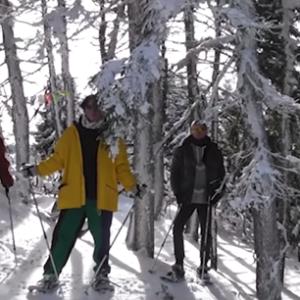 Bilderbuch im Schnee! Video zum Track 'Sandwishes'