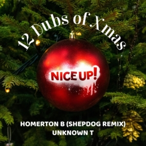 12 Dubs Of Xmas Vol 3 von NICE UP! records • FREE DOWNLOAD