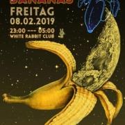 Space Bananas