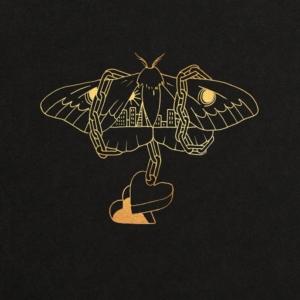 Happy Releaseday: David Gray - Gold In A Brass Age • 3 Videos + Album-Stream