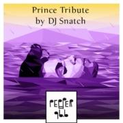 PRINCE TRIBUTE by DJ Snatch (Podcast)
