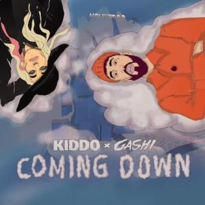 KIDDO x GASHI - Coming Down (animated Video)
